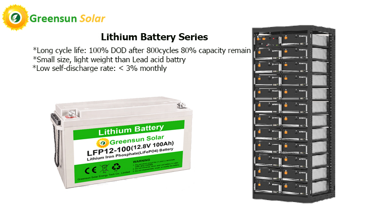 Lithium Ion Battery 12v 24v 48v